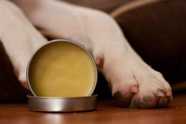 15. Защитный крем животные, собаки, советы, хитрости