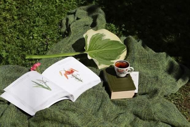 В ботаническом саду состоится концерт живой музыки о глубине русской песни