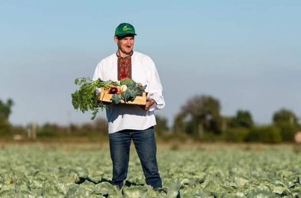 Киев возмущен: Молдавия защищает свой рынок отукраинских овощей