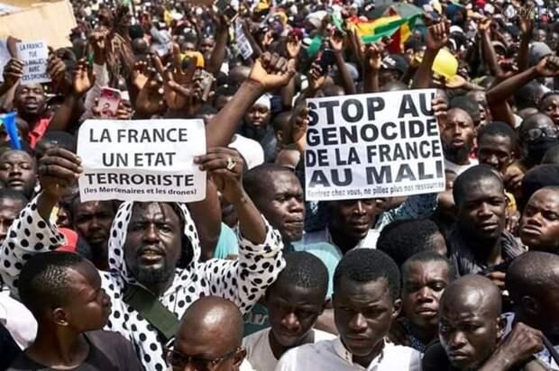 Африканское эхо на французских просторах: Вот сгорел «Нотр-дам де-Пари», и посыпалось...