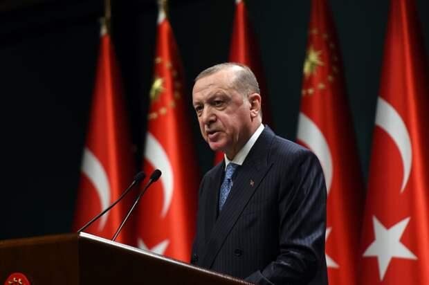 Эрдоган анонсировал визит российских инспекторов в Анталью