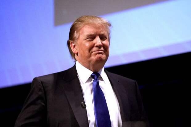 В США начато уголовное расследование в отношении компании Трампа