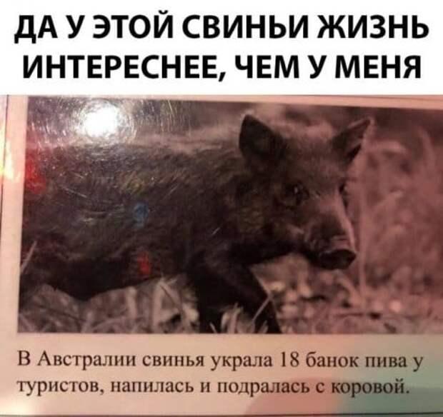 Народное))