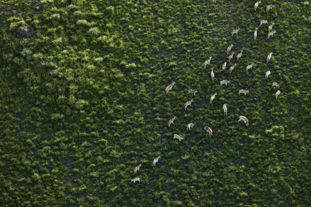 Красота Южной Африки с высоты птичьего полёта