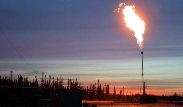 Арктический ПНГ: сжигать нельзя утилизировать