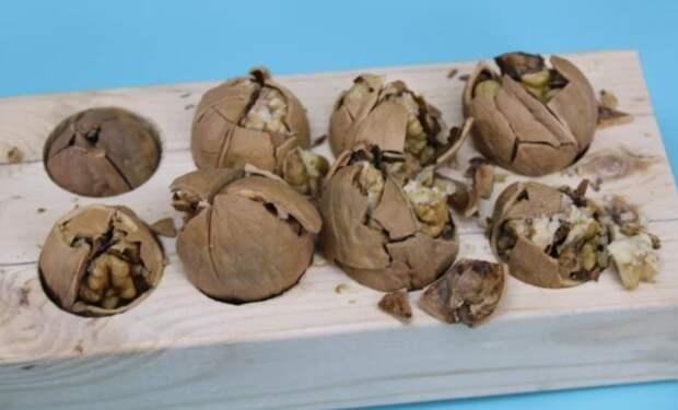 Мудрые европейцы всегда колют орехи интересным способом: удобно и ядро остается целое