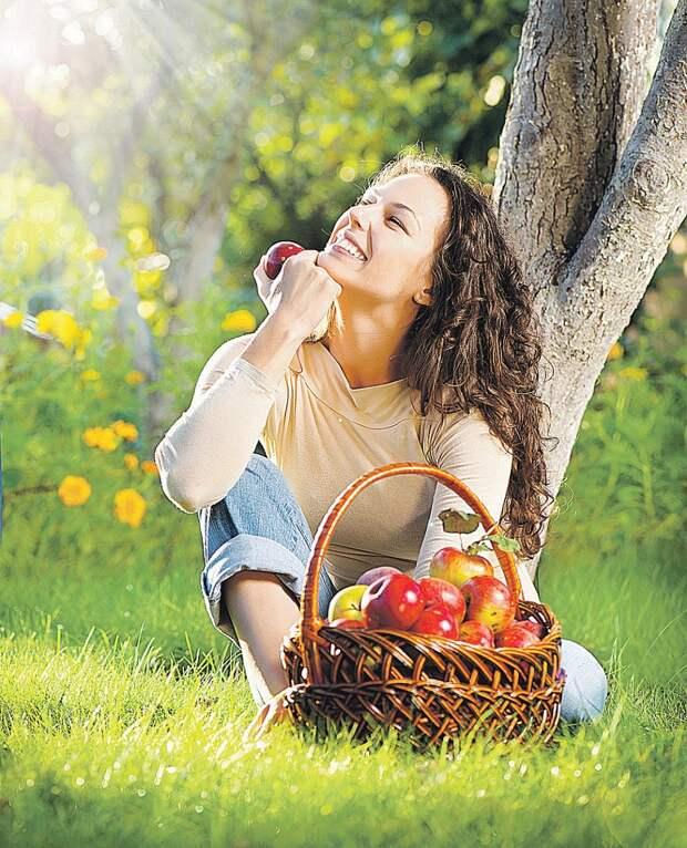 Чтобы летом полакомиться яблоками, надо реанимировать любимые плодовые деревья. Фото: PHOTOXPRESS