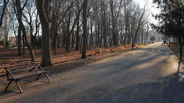 Москвичка на Челюскинской похитила рюкзак и «мобилку» у спящего на лавочке мужчины