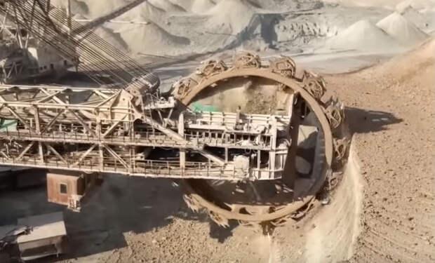 Находки из угольных шахт, которые скрывают ученые