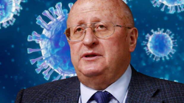 Гинцбург объяснил, почему уровень антител к коронавирусу может снизиться