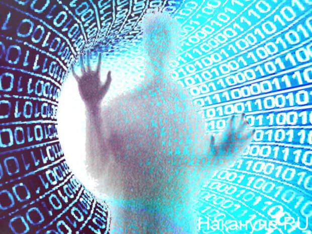 Коллаж, цифровизация, цифровая экономика (2020)| Фото: Накануне.RU