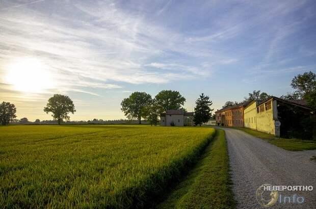 Деревню в Италии, в которой никто не заразился, исследуют ученые