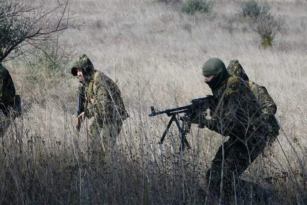 Обнародованы сенсационные данные о срыве украинской спецоперации в ЛДНР