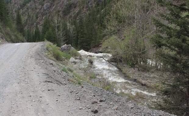 Река Чибитка справа от Улаганского тракта. Фото из интернета.