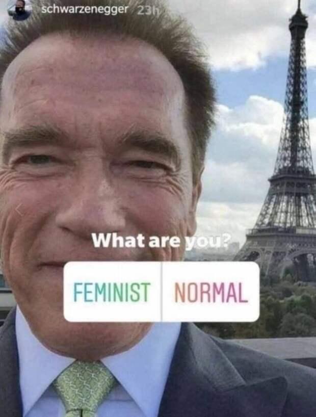 приколы про феминисток