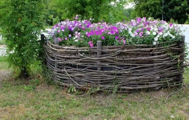 Аккуратная клумба из петуний станет настоящим украшением для вашего сада.