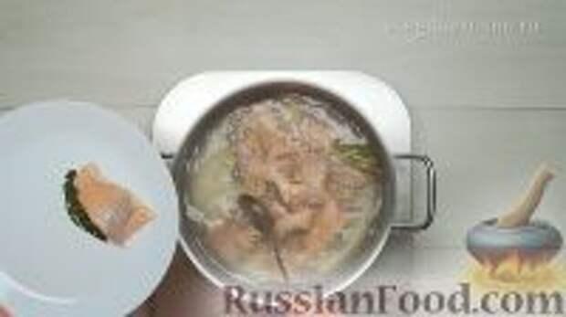 Фото приготовления рецепта: Ботвинья - шаг №3