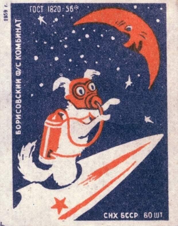 Советские собаки - космонавты в картинках