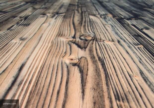 Специалисты из США создали полностью прозрачную древесину