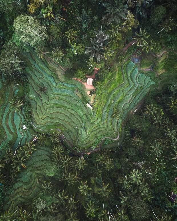 Майкл Матти показывает, как выглядит наша планета с высоты птичьего полёта