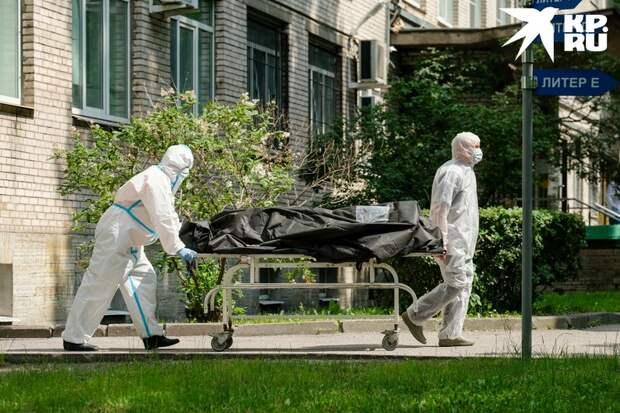 В странах, где БЦЖ прививались регулярно, смертность и заболеваемость росли не так быстро.