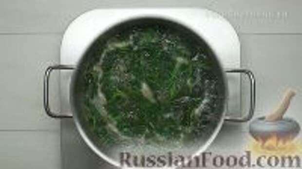 Фото приготовления рецепта: Ботвинья - шаг №14