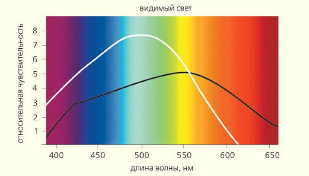 http://econet.ru/uploads/pictures/250301/content_gerontology4_1__econet_ru.jpg