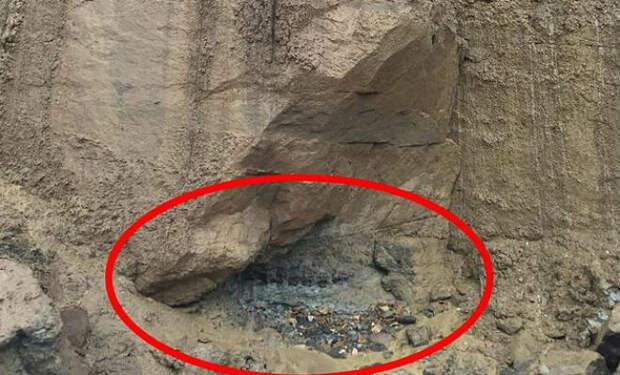 Кусок от скалы откололся и обнажил окаменелого динозавра