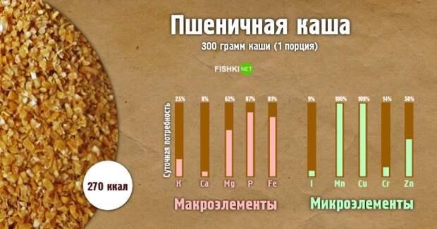 Пшеничная каша инфографика, каша, полезности, польза