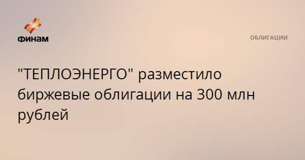 """""""ТЕПЛОЭНЕРГО"""" разместило биржевые облигации на 300 млн рублей"""