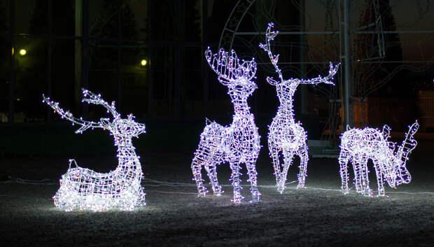 Новогодняя иллюминация включится в подмосковных парках 1 декабря