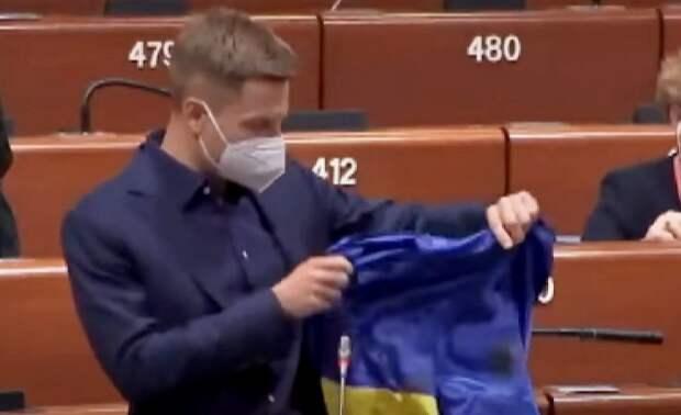 Украинский депутат на заседании ПАСЕ спровоцировал скандал