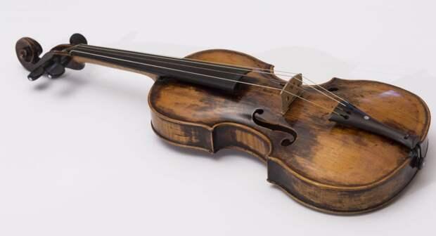 Скрипку Моцарта не привезут в Удмуртию из-за коронавируса