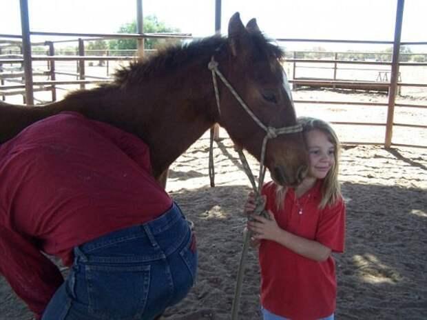 """Родители Эми запустили кампанию """"Мечта Долли"""", которая должна помочь подросткам, подвергшимся троллингу австралия, девочка, история, мир, модель, самоубийство, троллинг"""