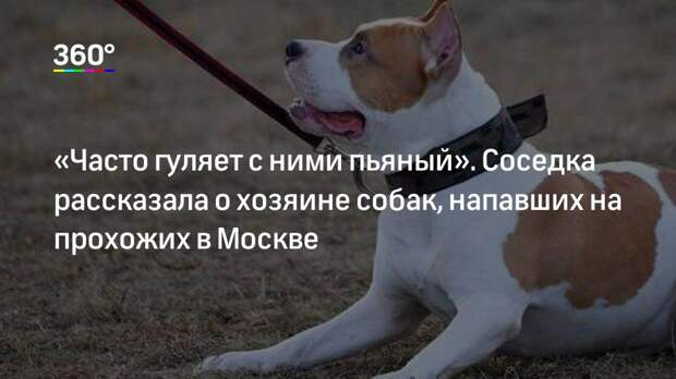 «Часто гуляет с ними пьяный». Соседка рассказала о хозяине собак, напавших на прохожих в Москве