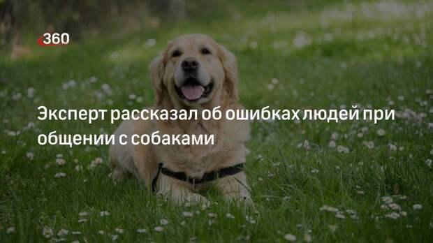 Эксперт рассказал об ошибках людей при общении с собаками