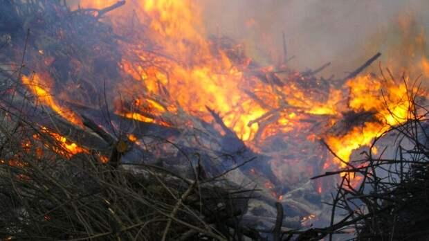 Пожароопасная обстановка может ухудшиться в пяти регионах России