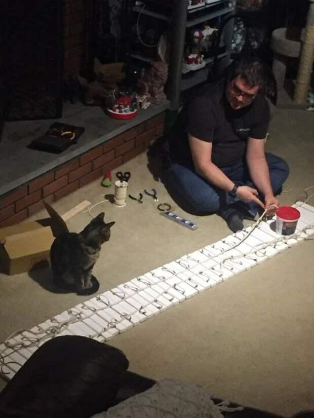 Зак помогает строить (Фото: Kitty Towers от R.A. Coutu / Facebook)