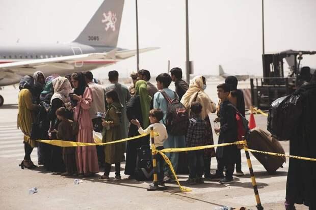 Последняя неделя эвакуации из Кабула: Украина успевает зарабатывать