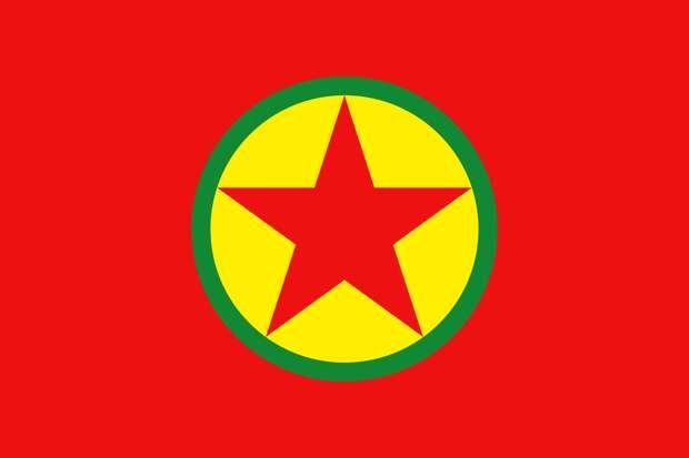 Н. Витренко: Приветствую соглашение властей Сирии с курдами