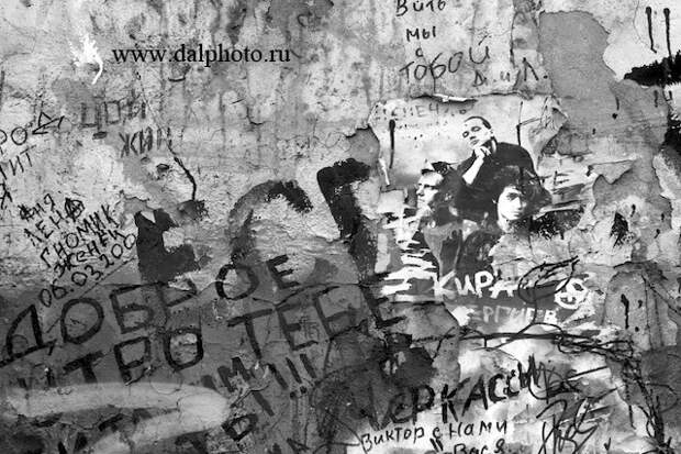 Стена Цоя