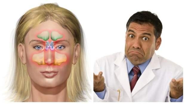 Наследие предков, или 7 бесполезных органов в теле человека