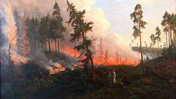 В Калифорнии собираются спилить около 10?000 секвой из-за пожаров