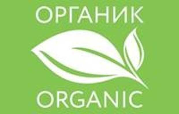 Современные технологии и органическая еда: как с помощью QR-кода выбрать лучшее!