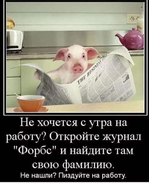 Смешные комментарии. Подборка chert-poberi-kom-chert-poberi-kom-13330907112020-12 картинка chert-poberi-kom-13330907112020-12