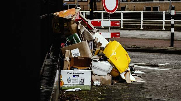 Штрафы за выброс мусора из машины могут вырасти до 120 тыс. рублей