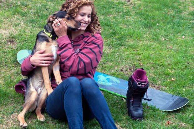Собаки, которых мы выбираем. Невероятные истории бездомных собак из Сочи