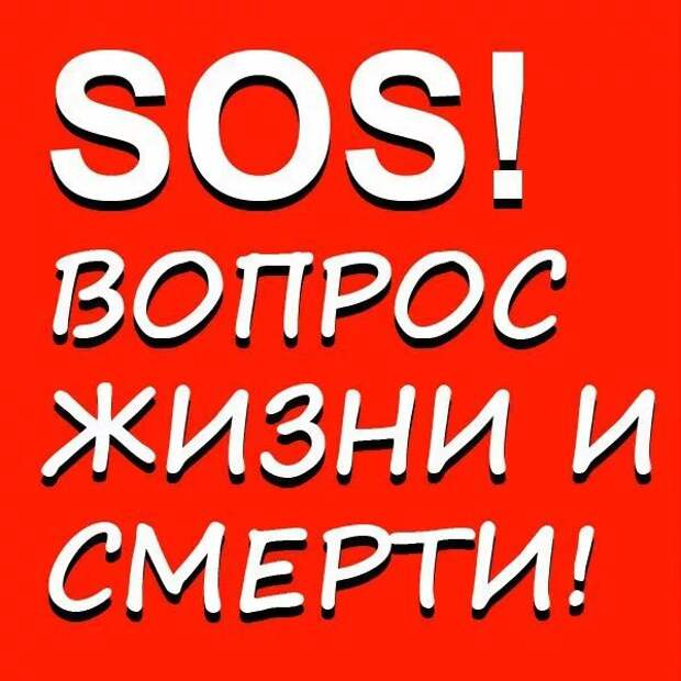 Люди! SOS!!! Такое невозможно осознать! Без вашего спасения их скоро убьют!!
