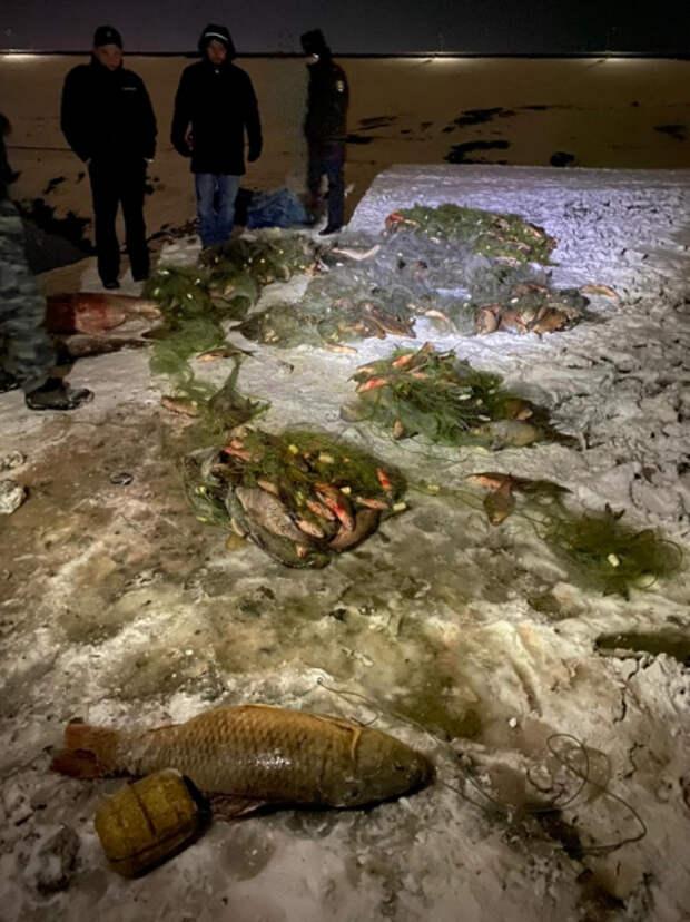 Браконьеры выловили из водохранилища Симферополя тонну рыбы