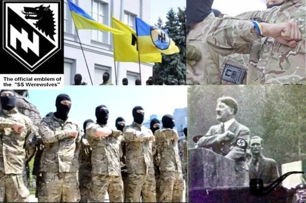 Нацисты «Азова» пошли на отказ от «расовой чистоты» ради участия в выборах